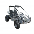 Adulte hors route Go Kart 300 XRS Silver