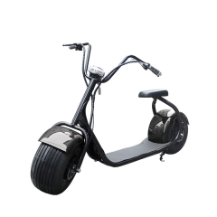 City Electric Scooter Big Wheel With Seat